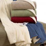 Biddeford Blankets Electric Fleece Heated Sherpa Throw with Digital Controller – Sage