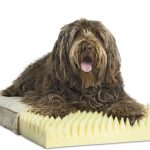 Pet Therapeutics OrthoPetic Orthopedic Foam Comfort Pad
