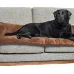 Pet Therapeutics TheraWarm Self Warming Sofa Bolster and Furniture Protector