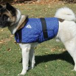 HyperKewl Evaporative Cooling Dog Coat – Large
